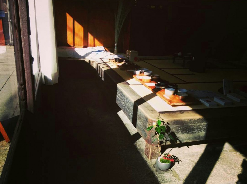 09_盆栽の日光浴