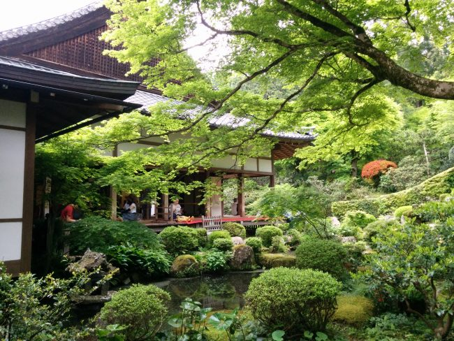 新緑の京都 大原三千院